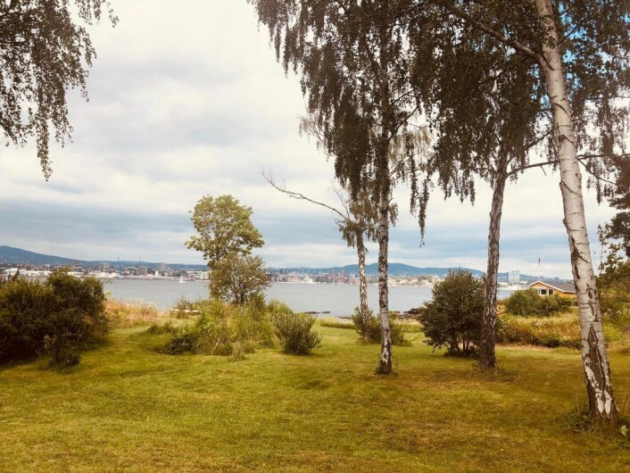 Utsikt mot fjorden og Oslo by fra hagen til hytta på Lindøya. Foto: Natalia Tesli