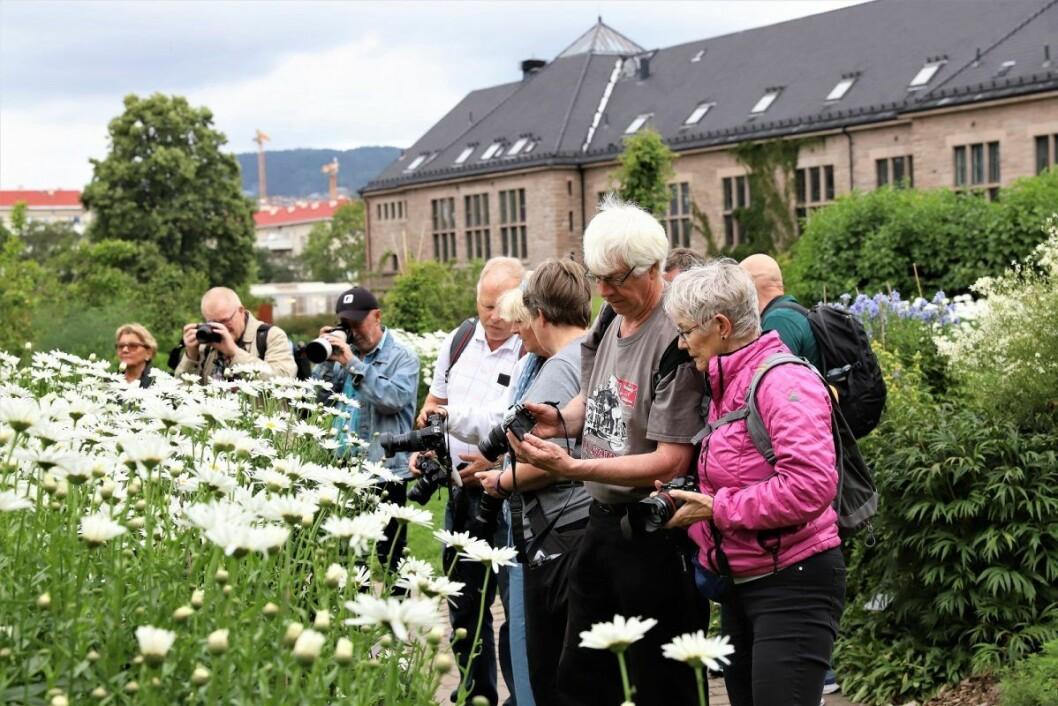 Diskusjoner og vurderinger av resultatene tar man fortløpende. Foto: André Kjernsli
