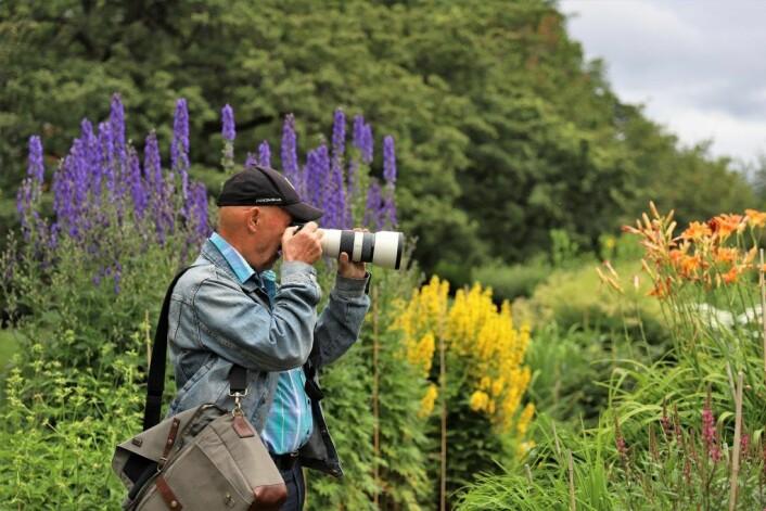 OKK-medlem Geir Arnesen i Botanisk hages blomsterhav. Foto: André Kjernsli