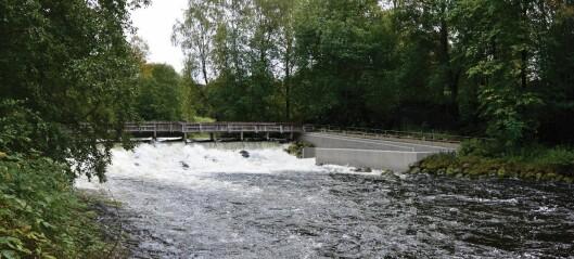 Øvre Akerselva får ny fisketrapp ved Teknisk museum