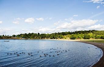 Ryddearbeidet på Langøyene starter til høsten. Neste sommer er øya stengt