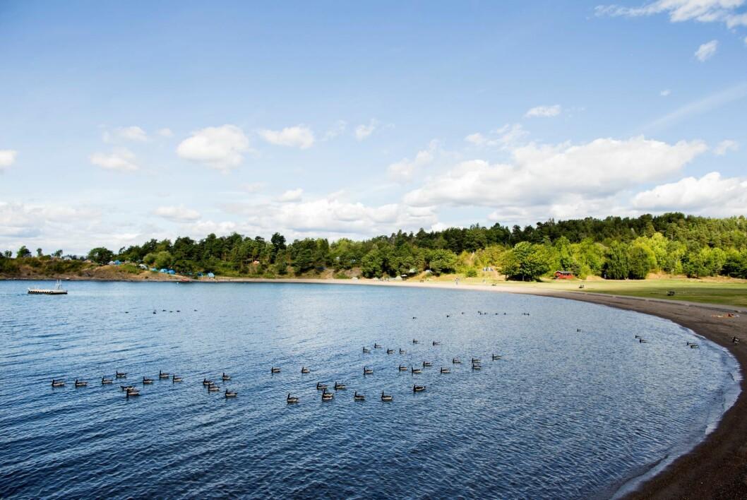 Langøyene i Oslofjorden er populære. Nå skal alt avfallet som er begravet der bort. Foto: Vegard Wivestad Grøtt / NTB scanpix