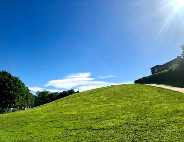 """Den grønne haugen på Adamstuen, på folkemunne kalt """"Idioten"""", har ikke noe offentlig registert navn hos Oslo kommune. Foto: Christine Thune"""