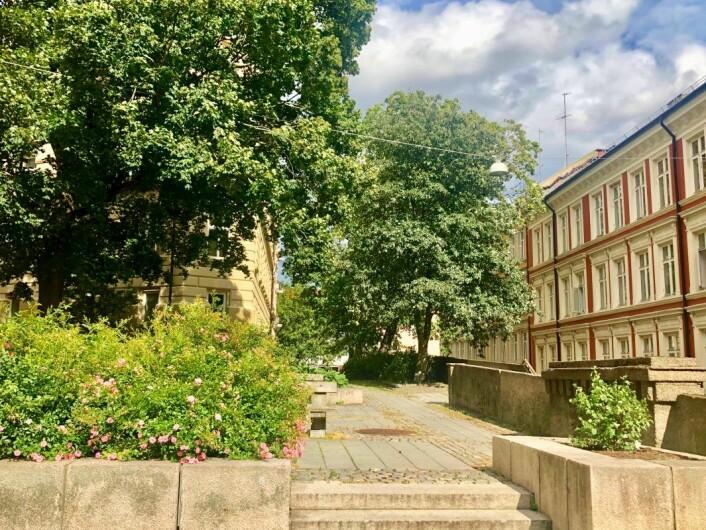 Bakenfor bygårdsbebyggelsen ligger en liten benkeplass som savner et verdig navn. Foto: Christine Thune