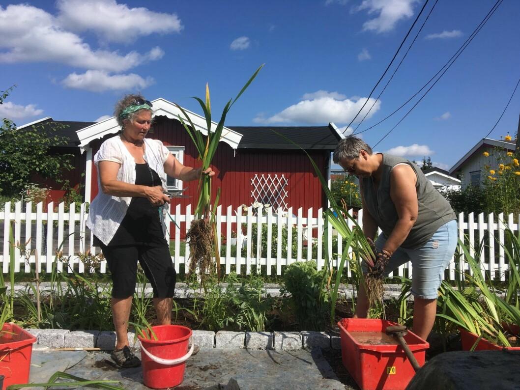 Adriana Bertet og Anita Glittum har hatt en bratt læringskurve, men sier det er både spennende og lærerrikt. Foto: Amalie Sofie Aune Bjerkem