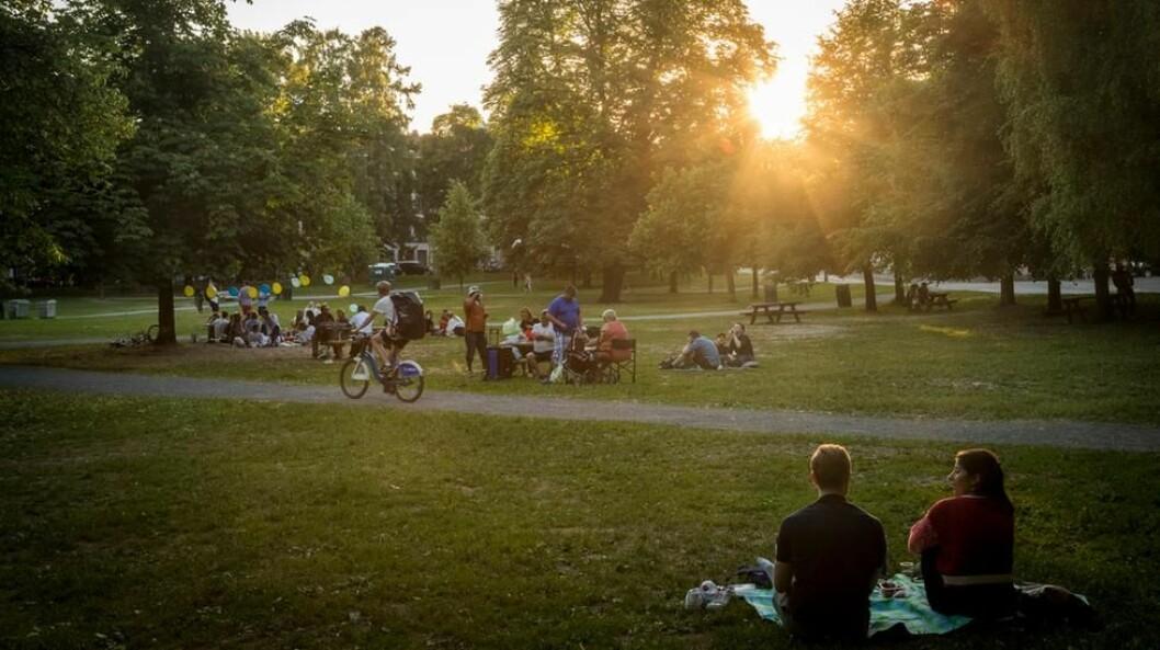 Sofienbergparken er en av byens parkperler som oslofolk er glade i. Foto: Heiko Junge / NTB scanpix