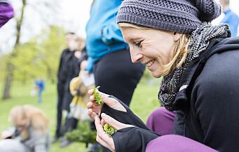– Kjøttforbruket i Oslo bør halveres. Vegetarmat må bli den nye standarden