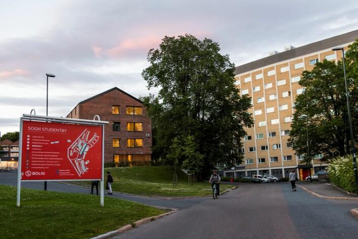 Ved Sogn studentby har tusenvis av studenter bodd opp gjennom årene. Foto: Jon Olav Nesvold / NTB scanpix