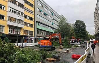 Folk er opprørte over trærne som blir felt i Olav Vs gate: – Vandalisme, sier en person