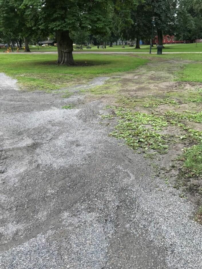 Flere steder var Sofienbergparken slitt og ødelagt i lang tid etter Piknik i parken. Foto: Jane Vogt Evensen / Grünerløkka SV