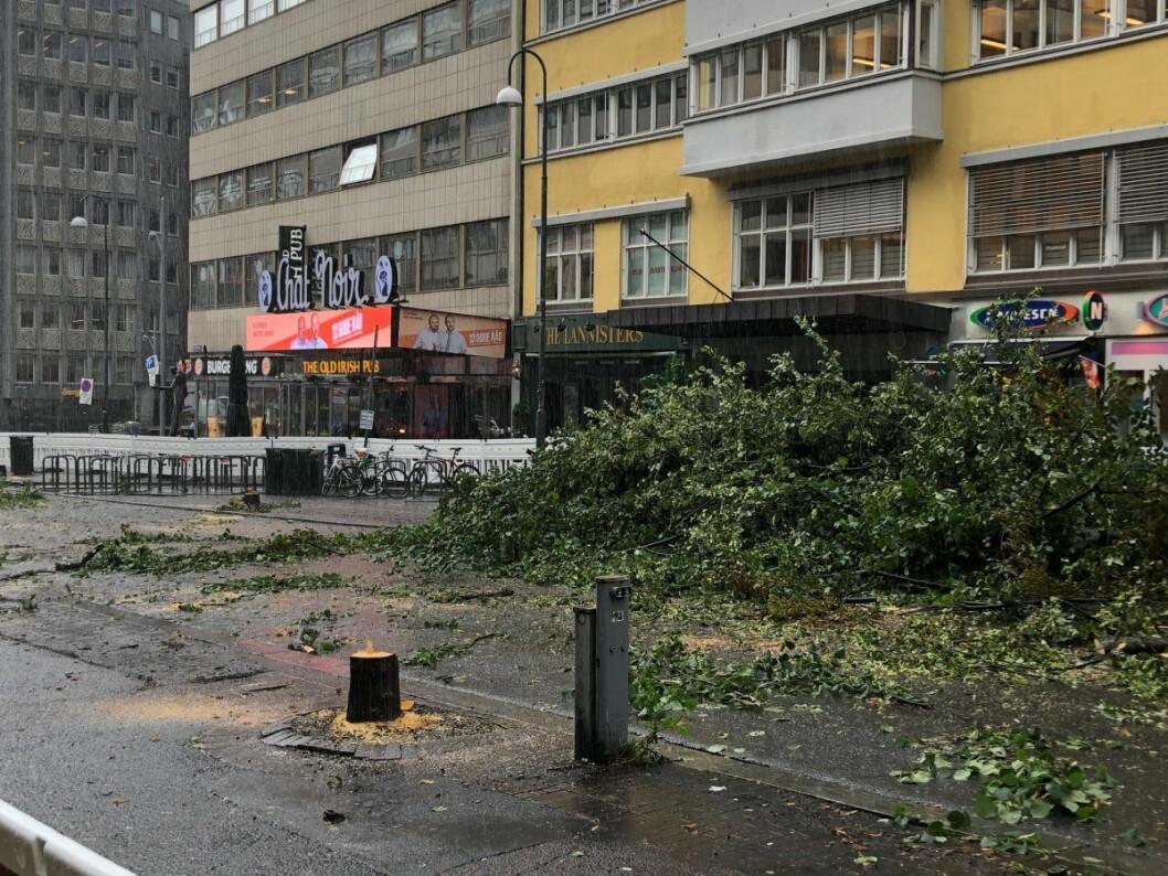 Det er på høy tid at øvre del av Olav Vs gate blir gågate og at fotgjengerne får bedre plass i hele gata, sier Lan Marie Nguyen Berg. Foto: VårtOslo