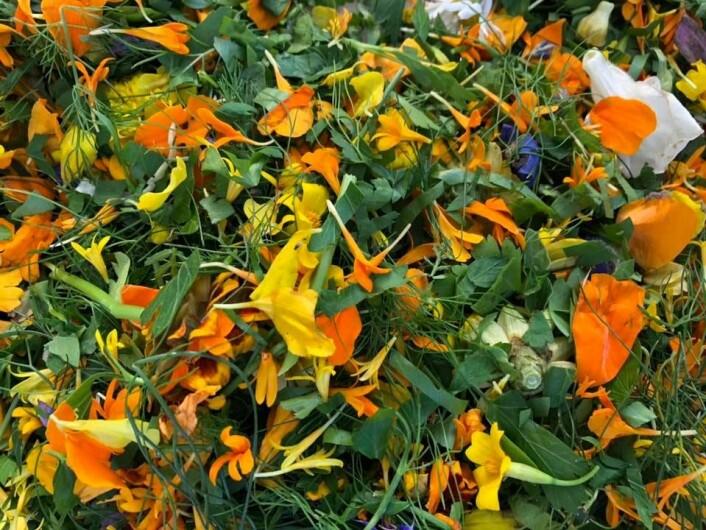 Garnityr. Blomster sto også på menyen. Foto: Stina Lindholm