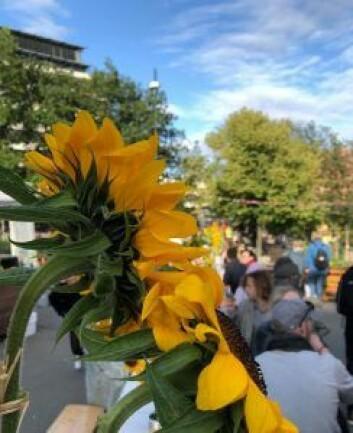bordet var pyntet med oppsatser laget av ungdom fra blomsterdekoratørlinja på Edvard Munch VGS. Foto: Stina Lindholm