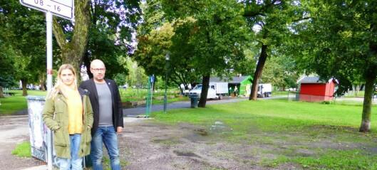 Piknik til besvær i Sofienbergparken: - Festivalen for stor belastning for naboene, mener SV