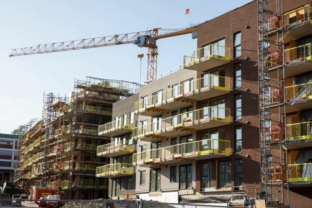 På Frysja skal det bygges rundt 900 nye leiligheter. Foto: Audun Braastad / NTB scanpix