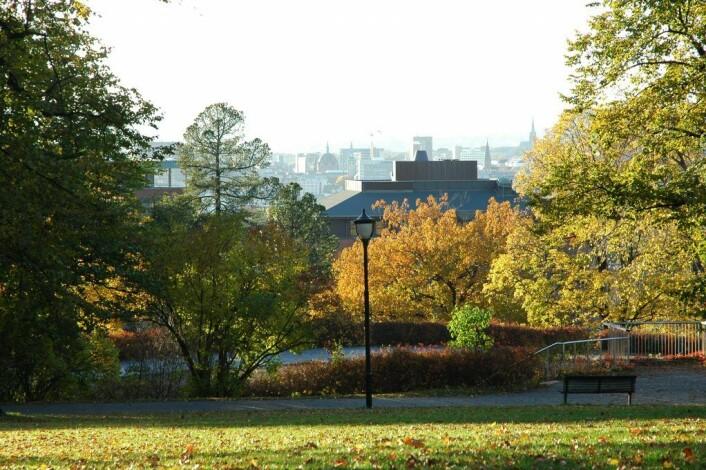 Utsikt fra Kampenparken. Foto: Bymiljøetaten