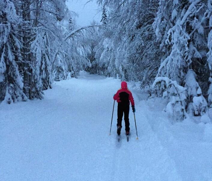 Kong Vinter er her. Når vi ikke er på skitur er dette gjerne tiden når vi tilbringer mesteparten av tilværelsen innendørs, som gjerne resulterer i økt energibruk til oppvarming, belysning og hjemmekos. Foto: Eidsiva Energi
