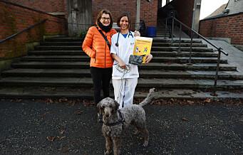Hundemøkk er utrivelig og kan spre smitte. Ha alltid med en hundepose når du lufter hunden