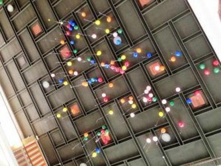 Verdensdagen for psykisk helse ble i fjor markert med ballongslipp i aulaen på Oslo Handelsgymnasium, i regi av helsesøster Tone.