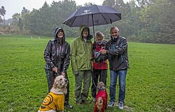 Ny Rusken-rapport: Hundeeiere vil ha flere lufteområder