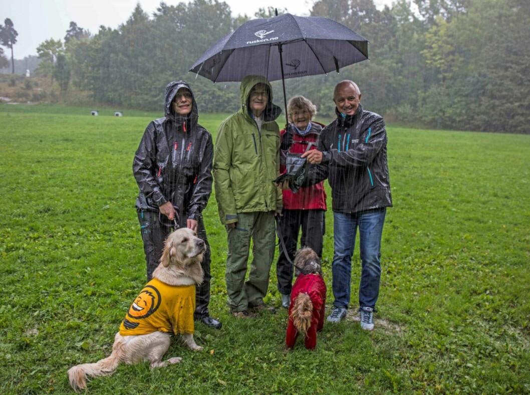 Lite kan slå å gå tur med hunden i deilig norsk sommervær. Her fra hundrerusken på Ekeberg.