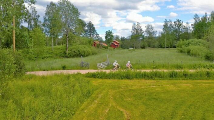 Sykkeltur forbi Sørli i Østmarka. Foto: Bymiljøetaten