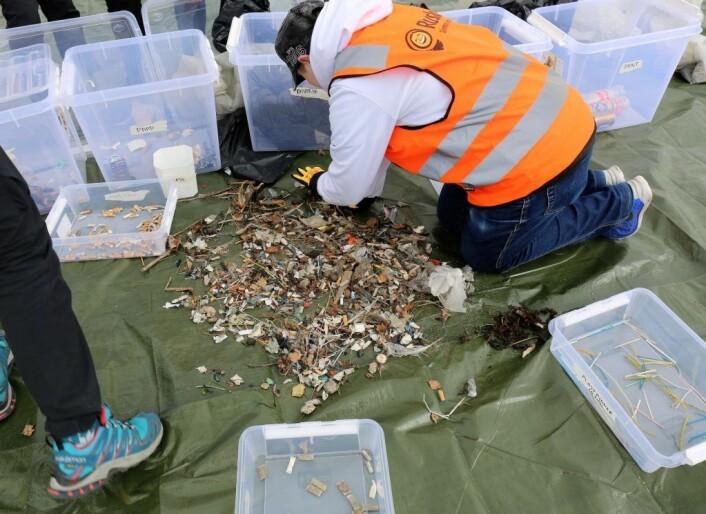 Etter innsamling ble avfallet sortert. Foto: Rusken