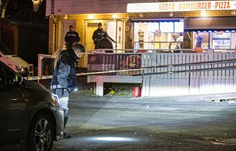 Ytterligere en mann pågrepet i drapssaken i Prinsdal
