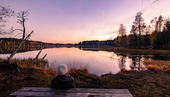 Solnedgang ved Sognsvann