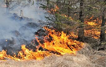 Alternativ påske trekker folk til Marka. - Vær forsiktig med åpen ild, sier brannvesenet