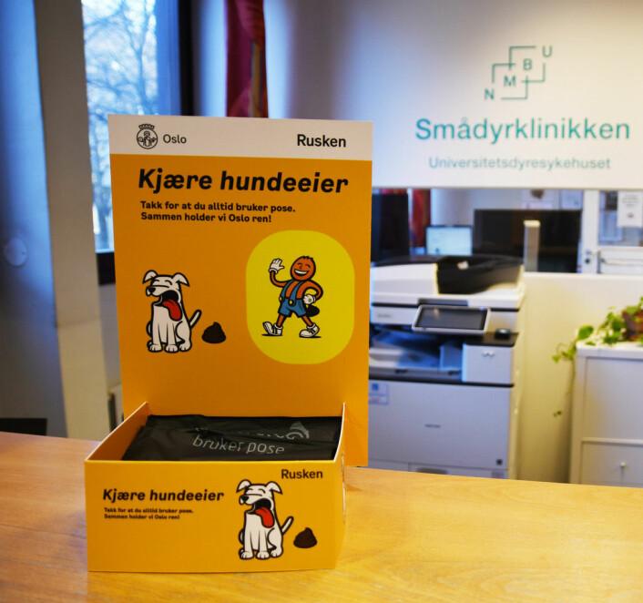 Rusken hundeposer kan du få blant annet på smådyrklinikken ved Veterinærhøyskolen på Adamstuen. Foto: Miriam Alveberg