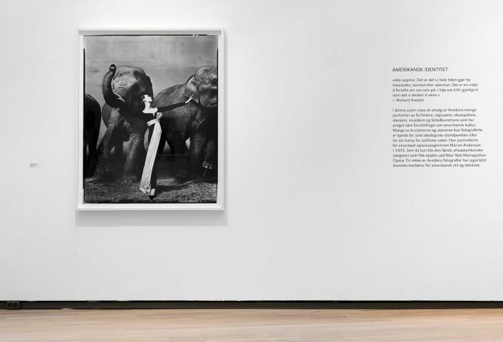 22 år gammel startet Avedon å arbeide som frilansfotograf, blant annet for motemagasinet. Bildene hans skilte seg ut ved at han fikk modellene til å gjengi følelser, personlighet og bevegelse. Foto: Henie Onstad