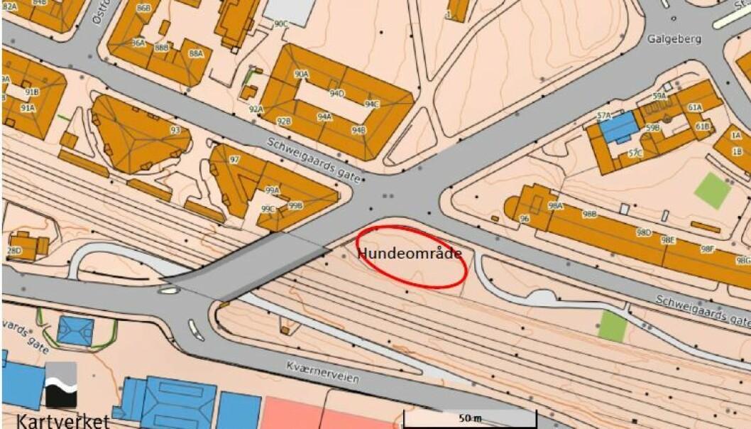Her er lokaliseringen av hundeområdet bymiljøetaten har pekt seg ut.