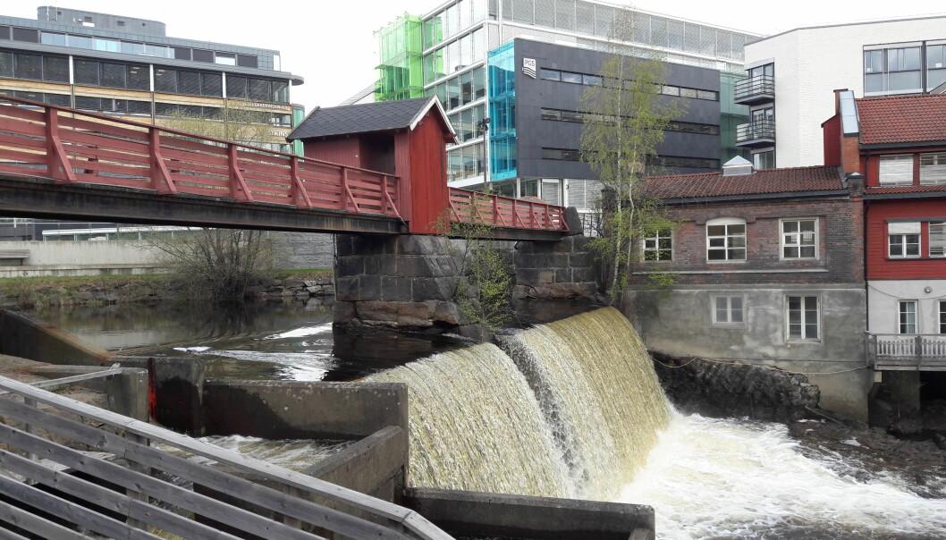 Målestasjonen i Lysakerelva. Hver uke kommer folk fra VAV, låser seg inn i den røde bua på broa, og henter ut en vannprøve.