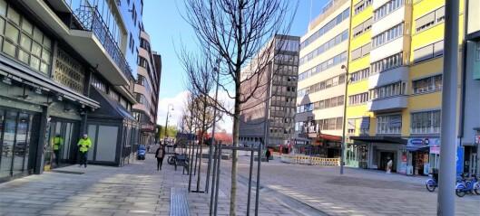 Nye trær er plantet i Olav Vs gate. Snart er den kontroversielle miljøgaten ferdigstilt