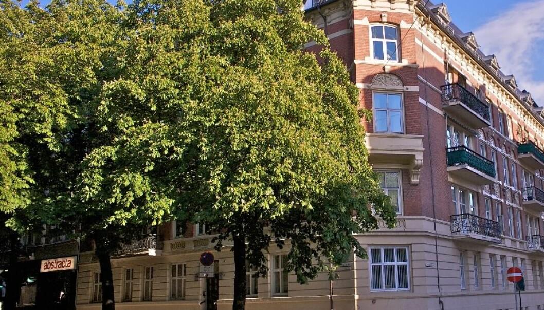 Mandag begynner planting av 10 nye kastanjetrær i Bygdøy allé. Da har det gått to og et halvt år siden bystyret vedtok å redde trærne i paradegaten.