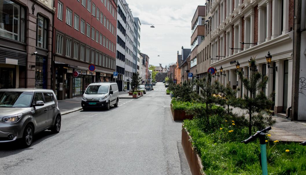 Overvannshåndtering gjennom grønne løsninger er viet god plass i den nye gatenormalen.