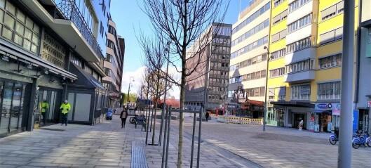 – Olav Vs gate har blitt død, gold, lite tiltalende, sjarmløs og med små nye trær på stram giv akt
