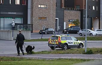 Én pågrepet og én kjørt til legevakt etter masseslagsmål på Mortensrud