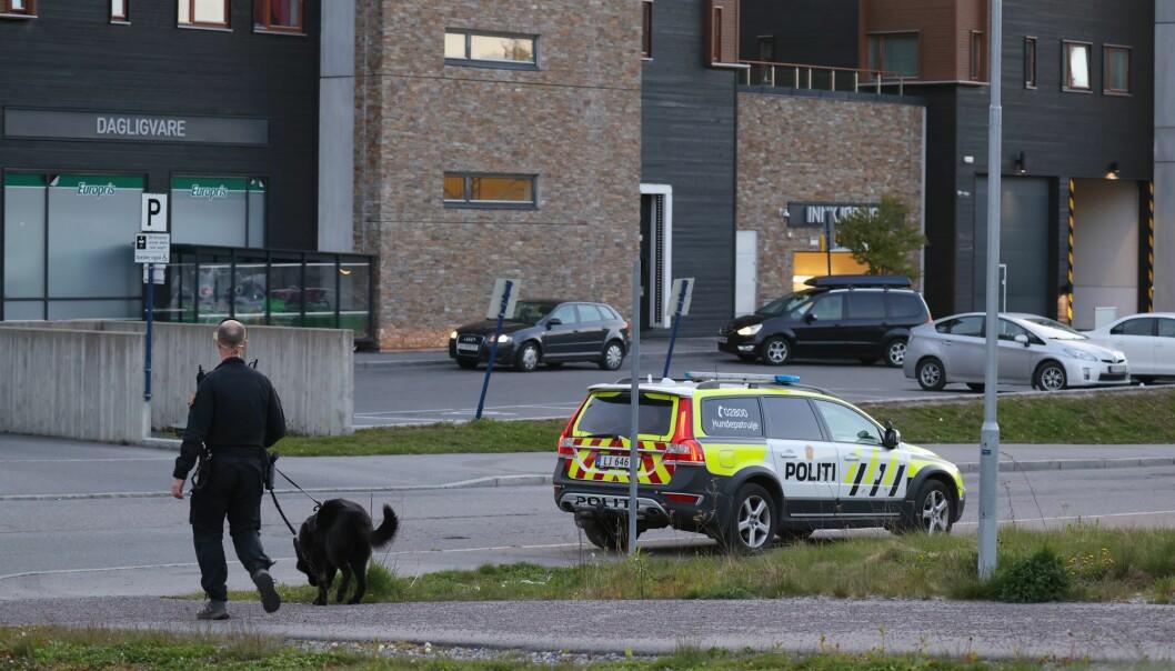 Politiets hundepatrulje på plass etter masseslagsmålet på Mortensrud.