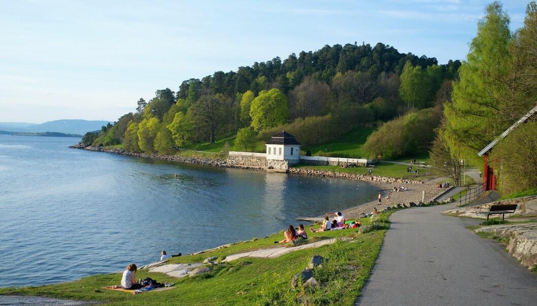 Hvervenbvukta er et populært bade- og rekreasjonsområde om sommeren. Nå frykter MDG i Søndre Nordstrand at badeidyllen kan bli ødelagt.