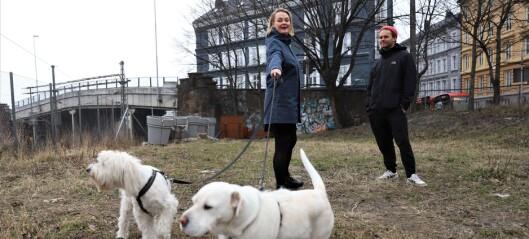 Flertallet av lokalpolitikerne i Gamle Oslo støtter forslaget om hundepark i Schweigaards gate
