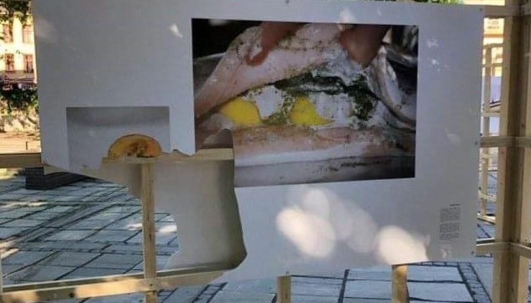 Bildet er revet i stykker. Det samme er gjort mot flere av de andre verkene som utgjør utstillingen på Schous plass.
