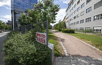 Eiendomsselskap ønsker 12-etasjers bygg i Sommerfrydparken i Vika. Beboerforening: «Uakseptabel gisseltaking av byens arealer»