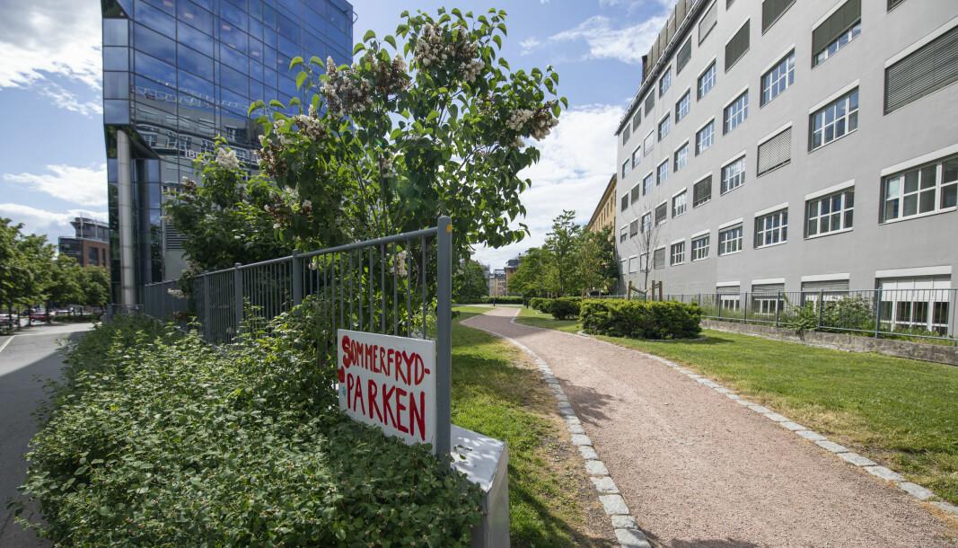 Her, i den østlige enden av Sommerfrydparken, ønsker Winta eiendom å bygge et tolv etasjer høyt bygg.