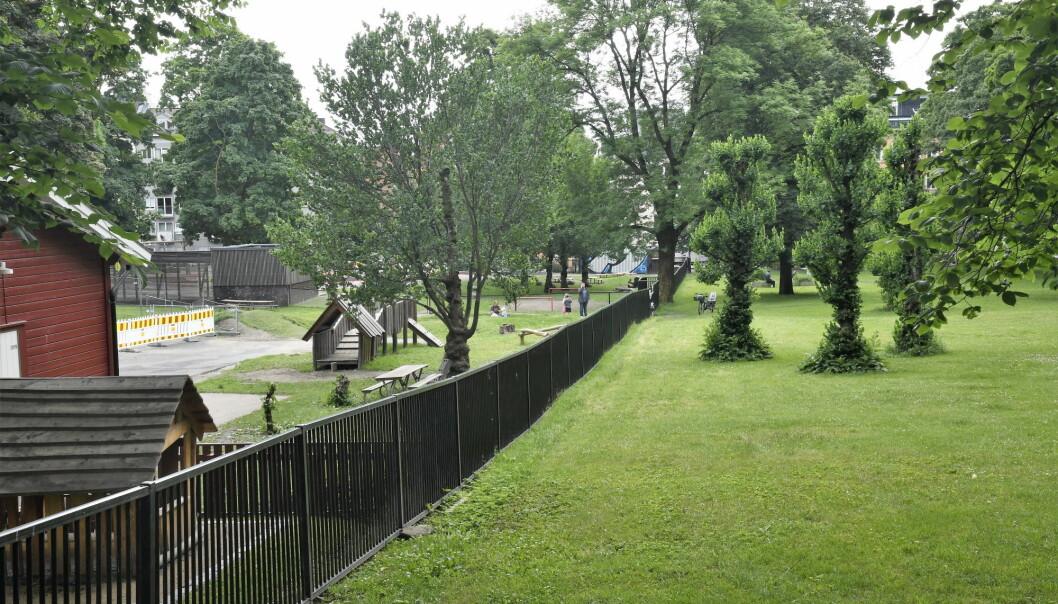 Det er i dette gjerdet bydel Grünerløkka nå vil lage hull for å få plass til en gangvei fra Sofienberg skole til Sofienbergparken.