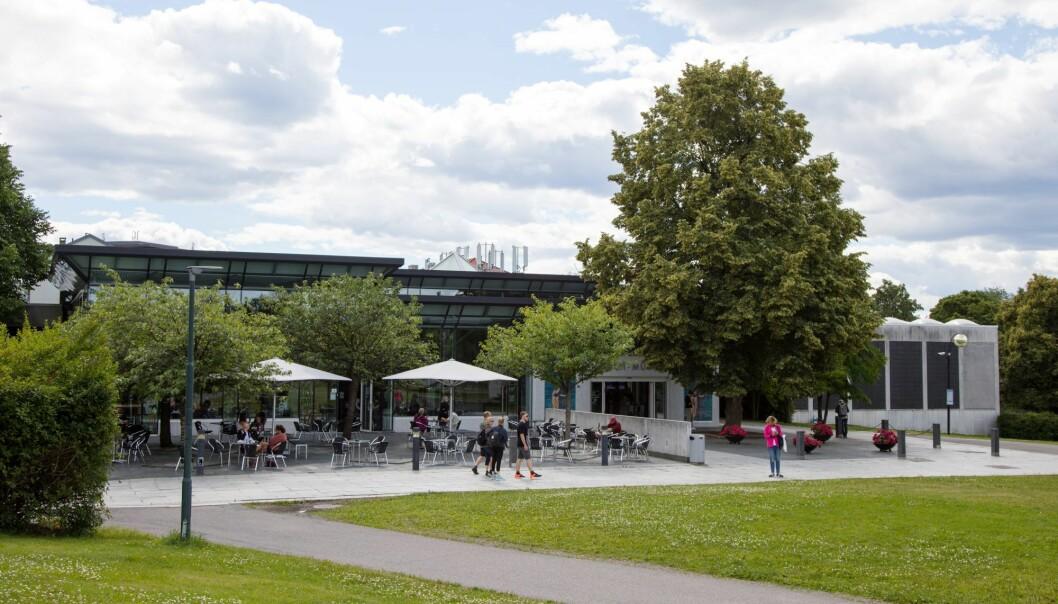 Hva skal det gamle Munchmuseet fylles med? NRK drømmer nå om å flytte til Tøyen når bedriften forlater Marienlyst.