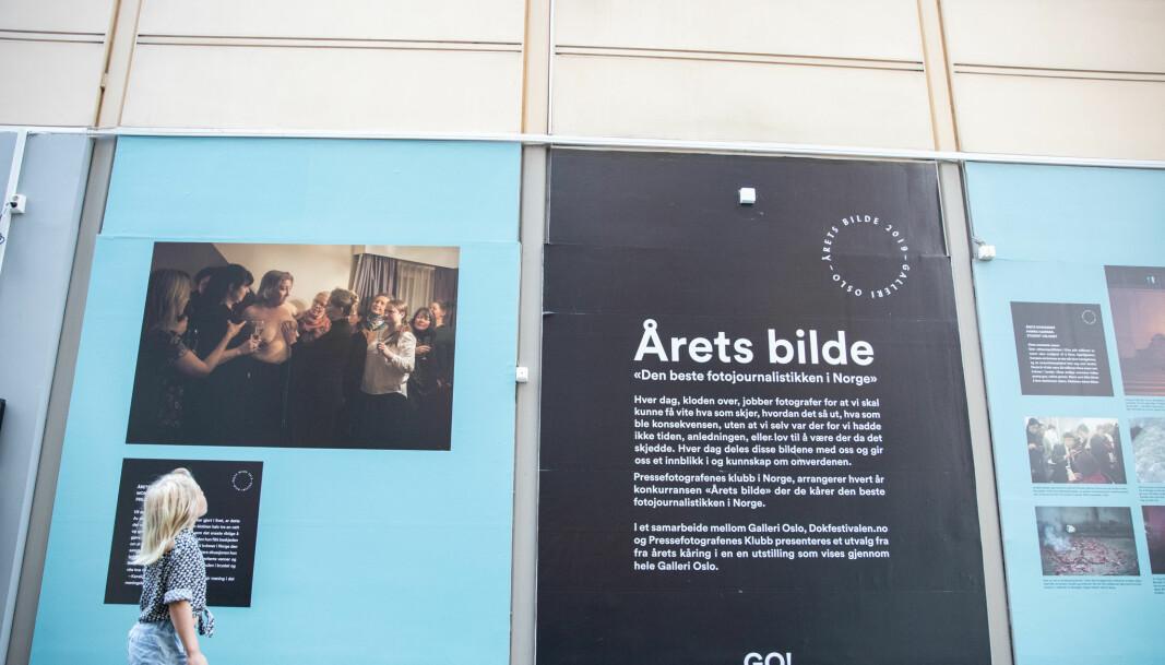 """I Galleri Oslo kan du se hele Årets Bilde 2019-utstillingen. Her vinnerbildet som tok hovedprisen, """"Vil du tafse på meg"""" av Monica Strømdahl."""