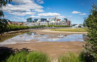 - Vannspeilet i Middelalderparken skal være fylt opp til helgen