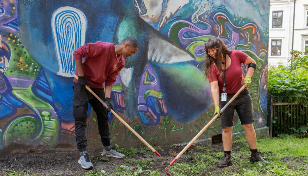 I bydel Gamle Oslo har Natalie Keene (til h.) lært Elon og andre ungdommer urbant landbruk i sommer.